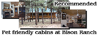 Pet Friendly Cabins at Bison Ranch